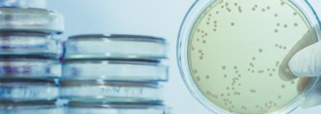 Legionella Awareness